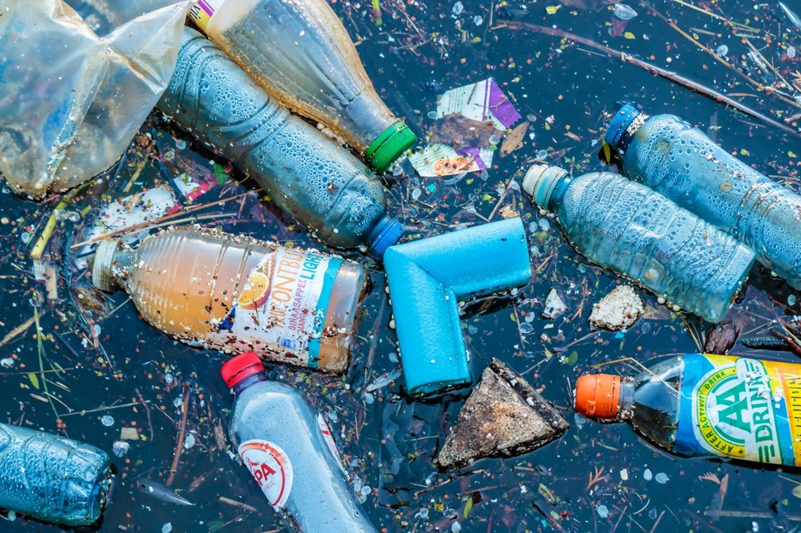 Plastic waste, including water bottles and fizzy drink bottles, litter the surface of the sea